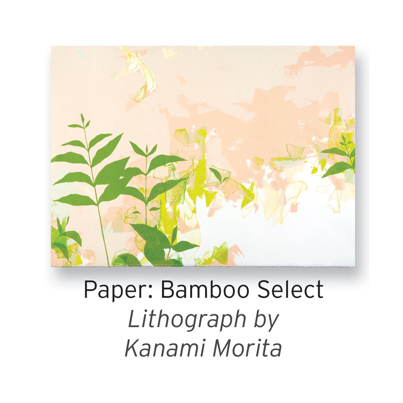 Bamboo Select