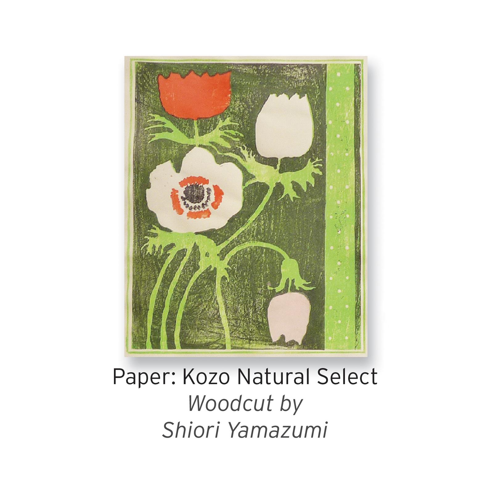 Kozo Natural Select